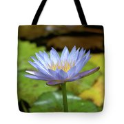 Blue And Yellow Water Lily Tote Bag