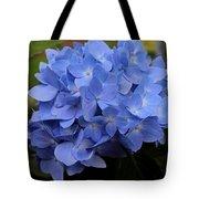 Blue Ballet Tote Bag