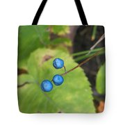 Blue Berries Tote Bag