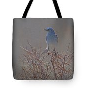 Blue Bird Colored Pencil Tote Bag