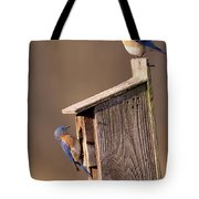 Blue Bird Couple Tote Bag