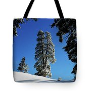 Blue Bird Day Tote Bag