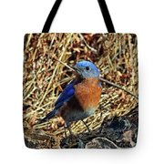 Blue Bird In The Grass Tote Bag