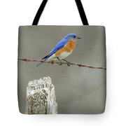 Blue Bird On Barbed Wire Tote Bag