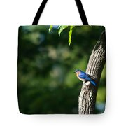 Blue Bird Perched Tote Bag