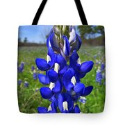 Blue Bonnet Tote Bag