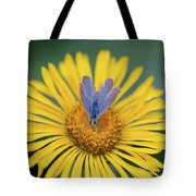 Blue Butterfly On Alpine Sunflower Tote Bag