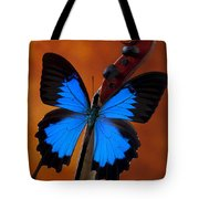 Blue Butterfly On Violin Tote Bag