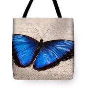 Blue Buttterfly Tote Bag