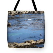 Blue California Bay Tote Bag