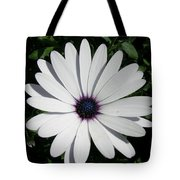 Blue Center Daisy Tote Bag