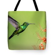 Blue Chinned Sapphire Tote Bag