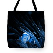 Blue Clownfish Big Size 15x11 - Beach House Art Tote Bag