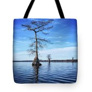 Blue Cypress Tote Bag