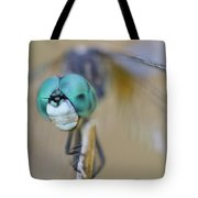 Blue Dasher Dragonfly #1 Tote Bag