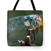Blue Dasher Dragonfly Tote Bag