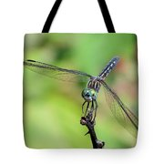 Blue Dasher Dragonfly On A Branch Tote Bag