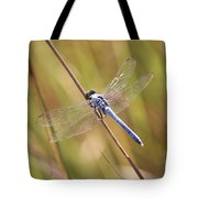 Blue Dragonfly Against Green Grass Tote Bag