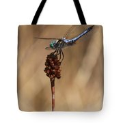 Blue Dragonfly On Brown Reed Tote Bag