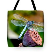 Blue Dragonfly On Lotus Seed Pod Back View Tote Bag