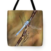 Blue Dragonfly Portrait Tote Bag by Carol Groenen