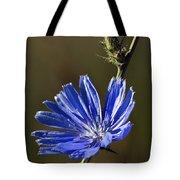 Blue Dream.. Tote Bag
