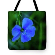 Blue Dreams 2 Tote Bag by Shiela Kowing