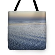 Evening Blue Tote Bag