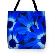 Blue Daisies, Medford Oregon Tote Bag