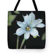 Blue Eyed Grass - 2 Tote Bag