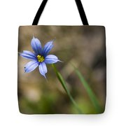 Blue-eyed Grass II Tote Bag