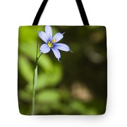 Blue-eyed Grass IIi Tote Bag