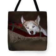 Blue Eyes Tote Bag by Colleen Taylor