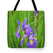 Blue Flag Iris-1  Tote Bag
