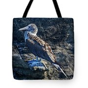 Blue-footed Booby Prize Tote Bag