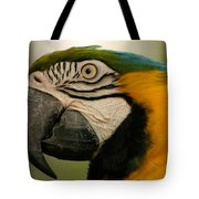 Blue Gold Macaw South America Tote Bag