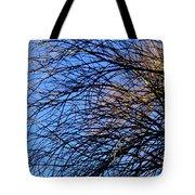 Blue Grace Tote Bag
