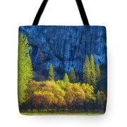 Blue Granite Tote Bag