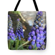 Blue Grape Hyacinths Tote Bag
