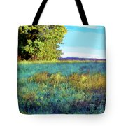 Blue Grass Sunny Day Tote Bag