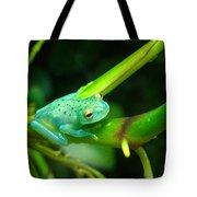 Blue-green Tropical Frog Tote Bag