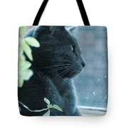 Blue Grey Contemplating Cat Tote Bag