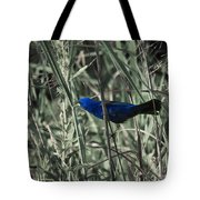 Blue Grosbeak At Rest Tote Bag