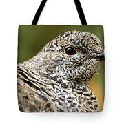 Blue Grouse Hen 2 Tote Bag