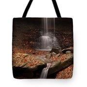 Blue Hen Falls And Cascade Tote Bag