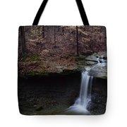Blue Hen Falls Series II Tote Bag