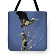 Blue Heron 21 Tote Bag