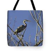 Blue Heron 22 Tote Bag