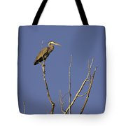 Blue Heron 28 Tote Bag