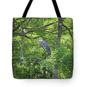 Blue Heron In Green Tree Tote Bag